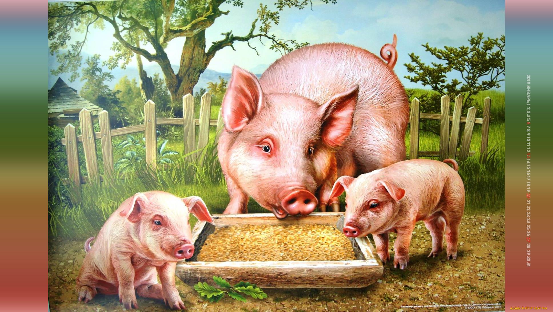 Открытку онлайн, очень прикольные рисунки свиней