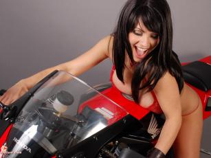 Картинка denise milani мотоциклы мото девушкой