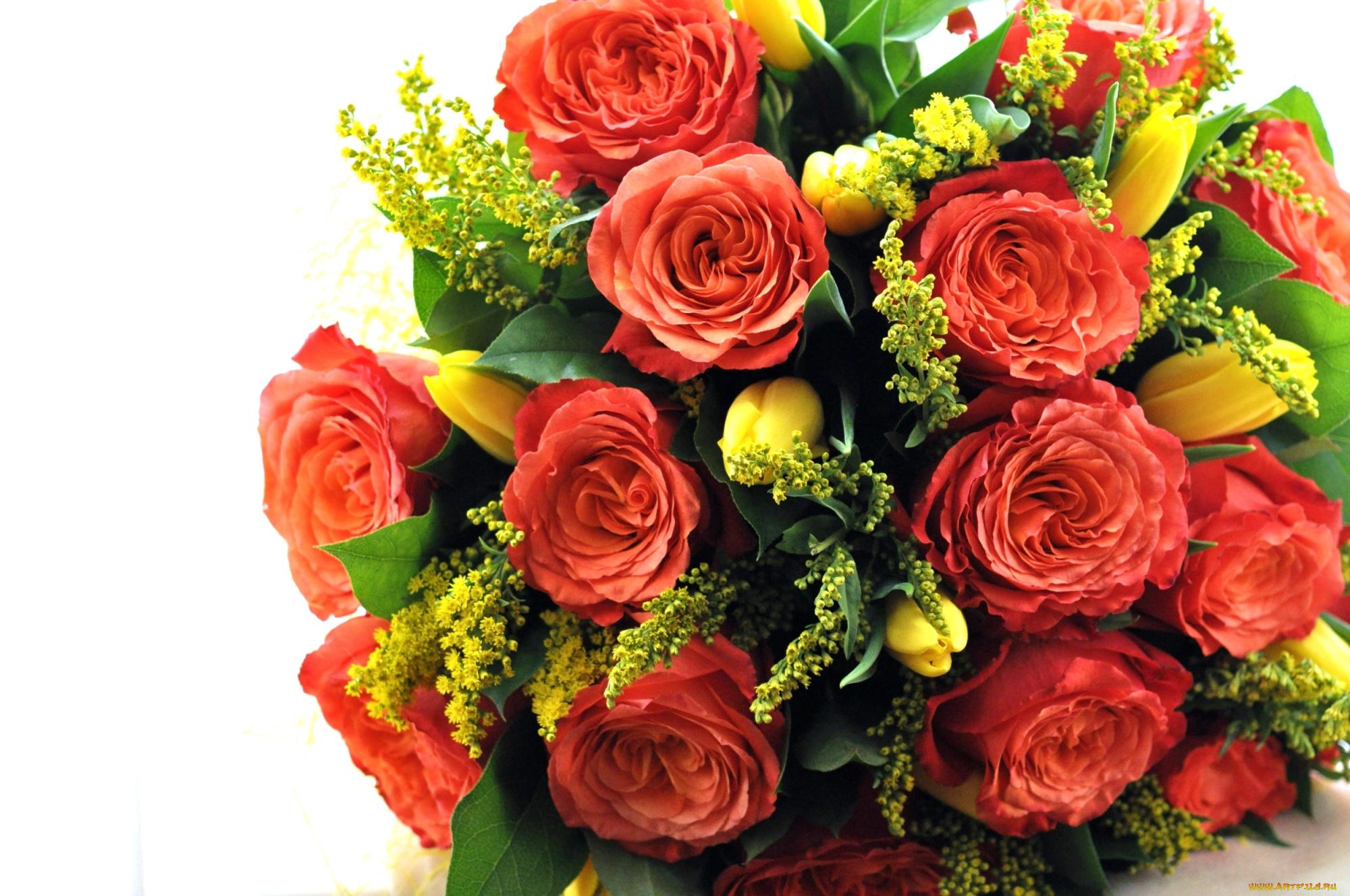 Картинки с цветами розы и тюльпаны, поздравить