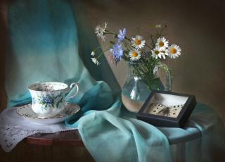 Картинка цветы луговые+ полевые +цветы бабочка цикорий ромашка чашка
