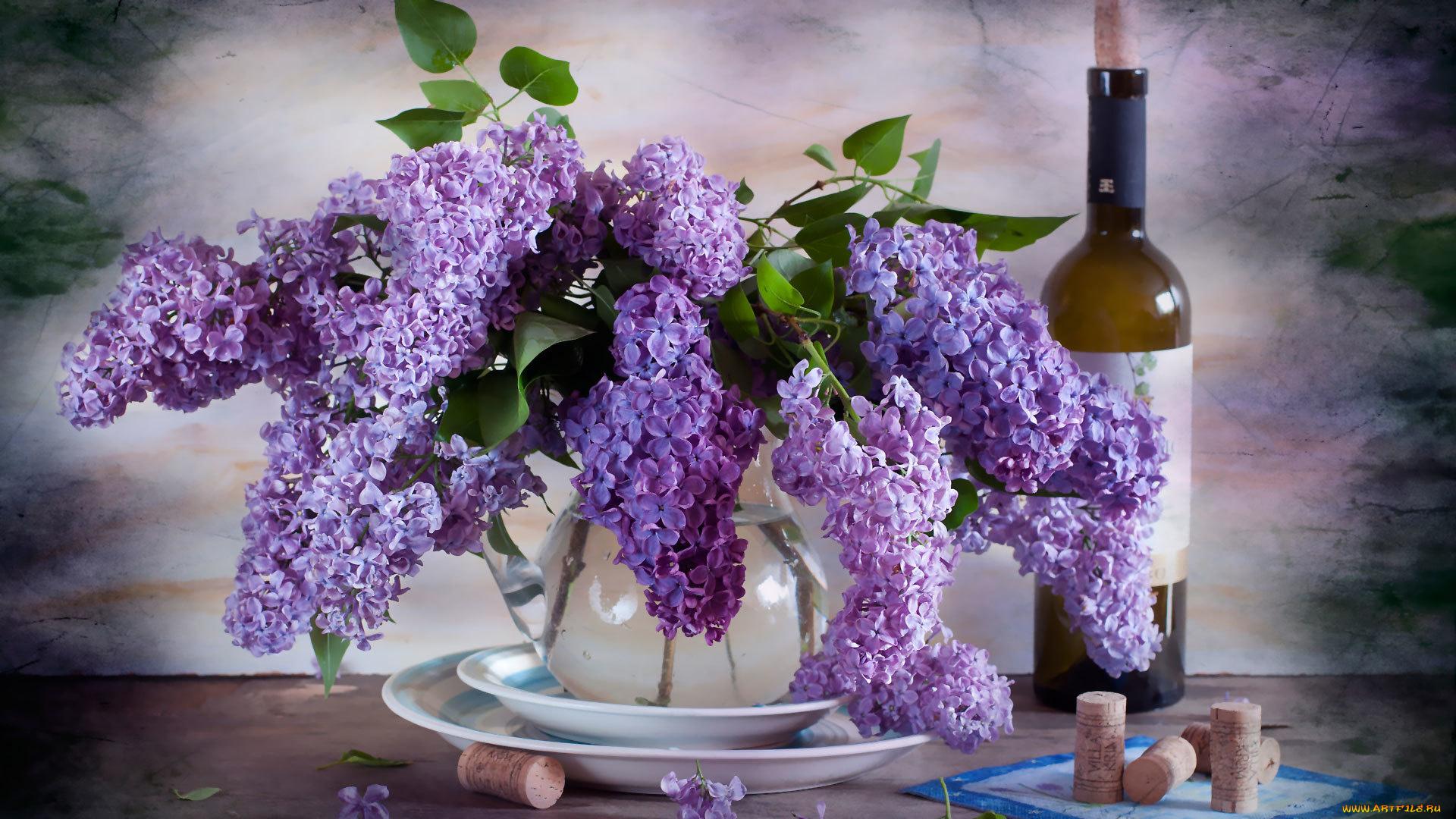 Букет сирени сиреневый, цветы белгород