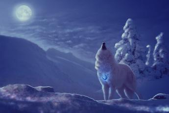 обоя разное, компьютерный дизайн, волк, снег, вой, луна, фон