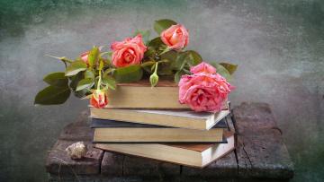 обоя разное, канцелярия,  книги, ракушка, розы, книги