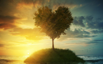 обоя разное, компьютерный дизайн, небо, трава, любовь, дерево, сердце, love, landscape, heart, beautiful, tree, romantic