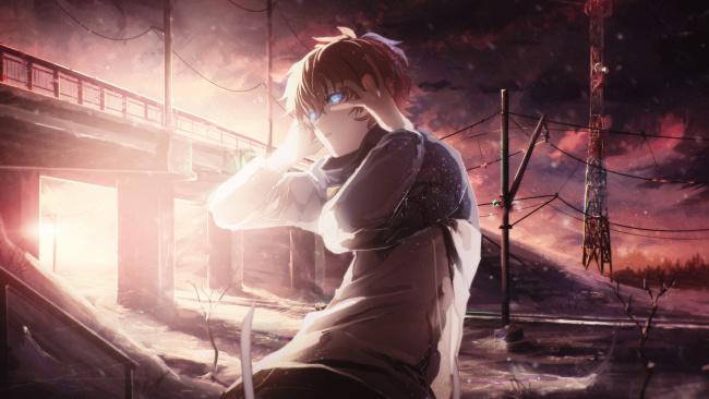 Обои картинки фото аниме, kekkai sensen, лео