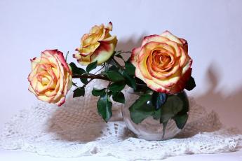 обоя цветы, розы, букеты, композиции, мбг, натюрморты, нфд, рц, салфетка