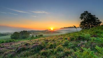 обоя природа, восходы, закаты, рассвет