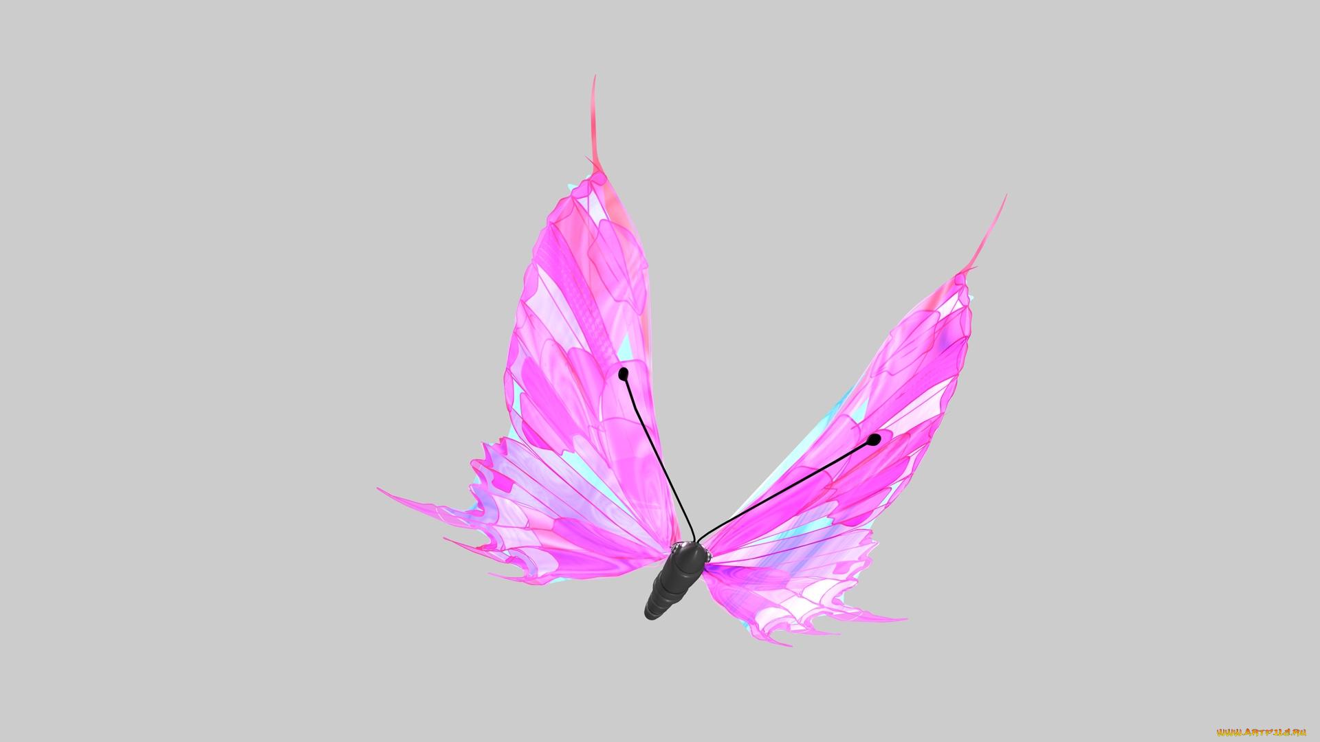 Обои на белом фоне бабочки