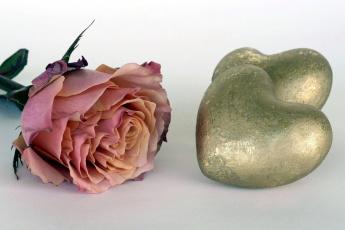 обоя праздничные, день святого валентина,  сердечки,  любовь, сердце, роза