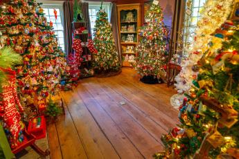 обоя праздничные, Ёлки, много, елки, новогодние