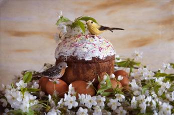 обоя праздничные, пасха, яйца, крашанки, праздник, весна, андреянова