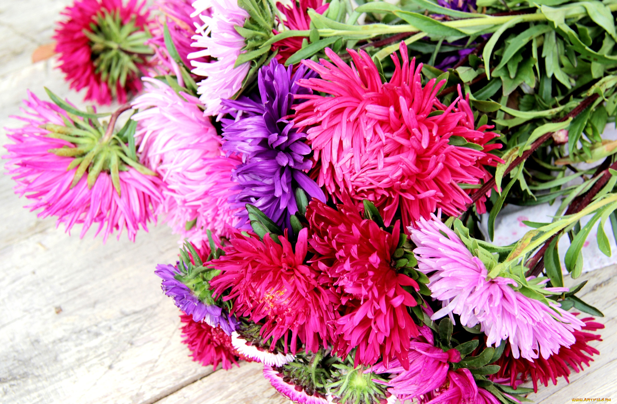 Осенний букет цветы фото и названия