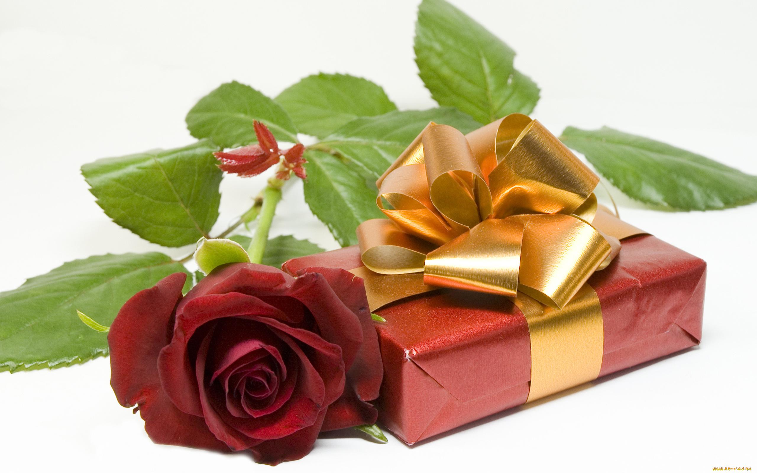Красивые открытки подарки для женщин, шаблоны
