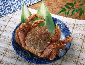 Картинка еда рыба морепродукты суши роллы блюдо краб