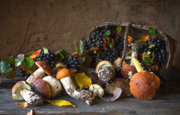 обоя еда, натюрморт, арония, осень, грибы, корзина
