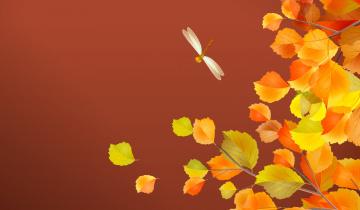 обоя векторная графика, природа , nature, осень, стрекоза, листья