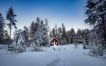 Картинка города -+здания +дома деревья лес сугробы снег зима