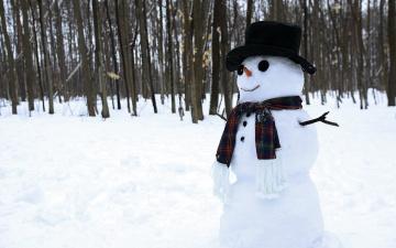 Картинка праздничные снеговики лес снеговик