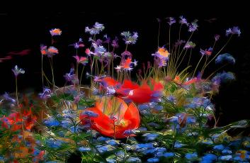 Картинка разное компьютерный+дизайн фон сад цветы клумба лепестки