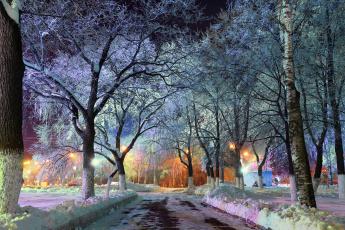 обоя природа, зима, вечер, нью-йорк, иллюминация, центральный, парк, огни