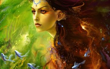 обоя fantasy, фэнтези, эльфы, фэнтази