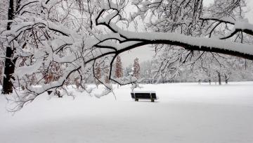 обоя природа, зима, снег, парк, скамья