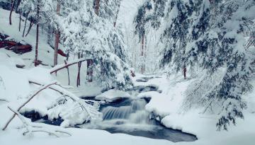 обоя природа, зима, лес, деревья, река, течение, пейзаж, снег
