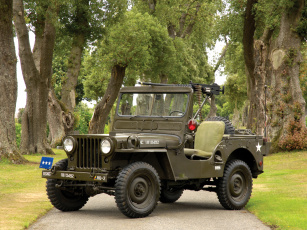 обоя willys m38 jeep 1950, техника, военная техника, 1950, jeep, m38, willys