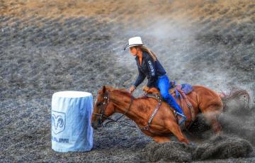 Картинка спорт конный+спорт родео
