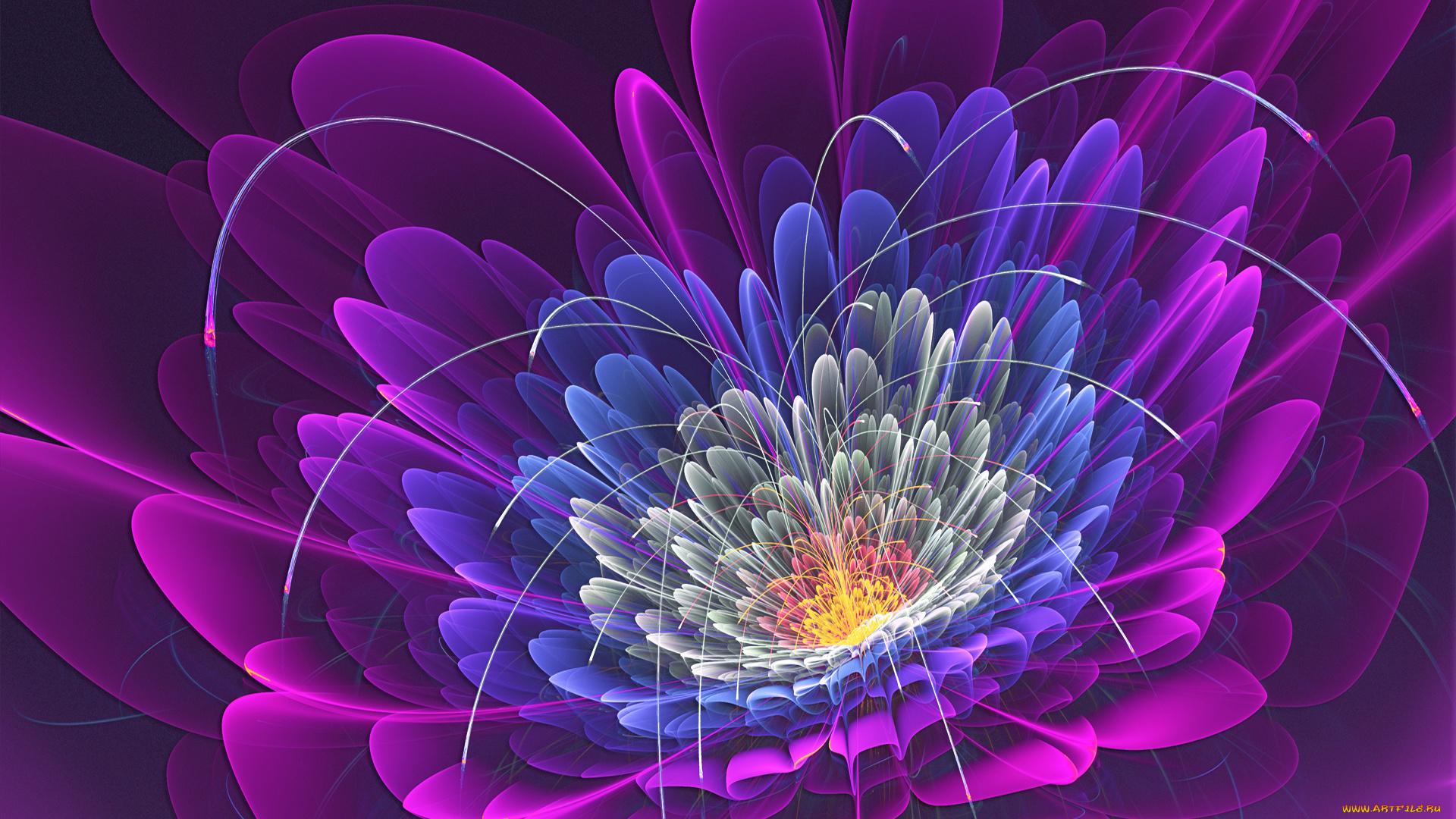 графика космос цветы роза graphics space flowers rose  № 927184  скачать