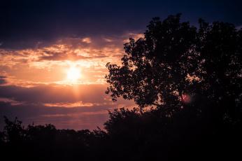 Картинка природа восходы закаты сумерки облака солнце деревья вечер