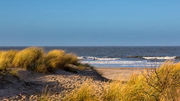 обоя природа, побережье, море, дюны