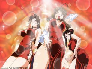Картинка аниме love hina