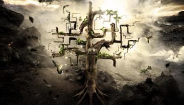Картинка фэнтези фотоарт другие миры абстракция дерево