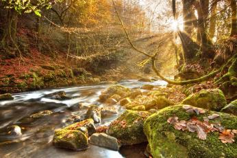 Картинка природа реки озера осень свет солнце камни вода