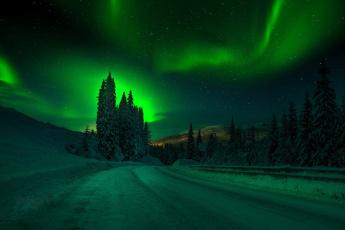 обоя природа, северное сияние, зима, дороги, северное, сияние, деревья, снег, ночь, небо, adnan, bubalo