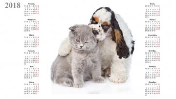 обоя календари, животные, кошка, собака, белый, фон