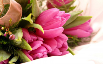 обоя цветы, букеты,  композиции, тюльпаны, букет