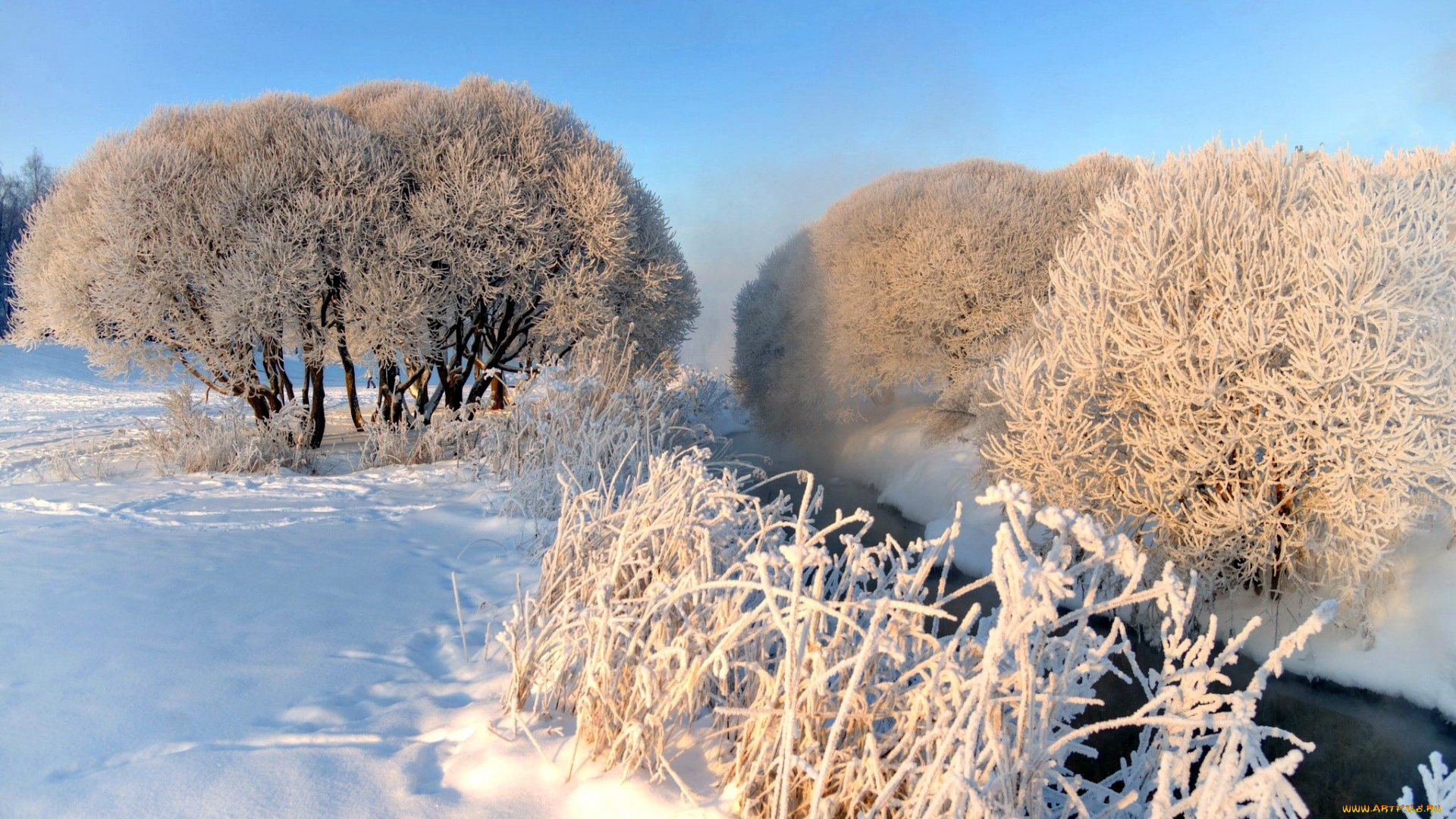 Иней дерево зима без смс