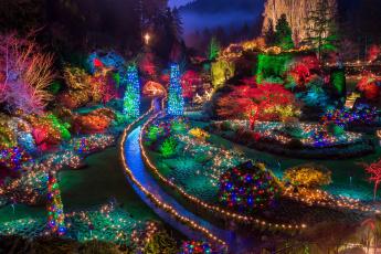 Картинка праздничные новогодние+пейзажи рождество парк