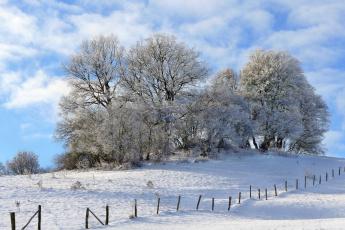 обоя природа, зима, снег
