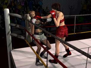 обоя 3д графика, спорт , sport, девушки, взгляд, фон, ринг, бокс