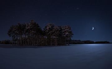 обоя природа, зима, луна, лес, ночь, снег