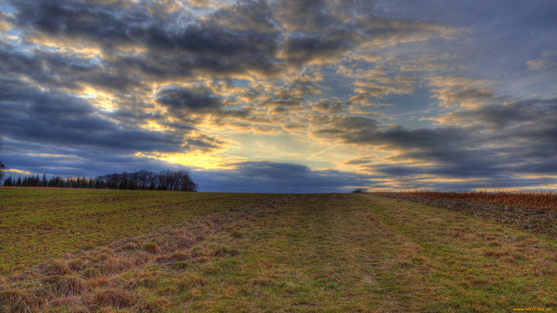 природа поле горизонт  № 3896435 бесплатно