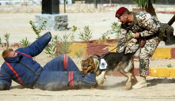 Картинка оружие армия спецназ soldiers army
