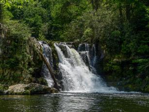 Картинка природа водопады река водопад лес
