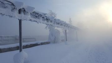 обоя природа, зима, иней, снег