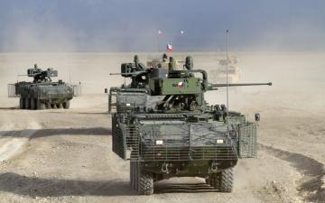 обоя pandur, техника, военная техника, австрийский, бронетранспортер