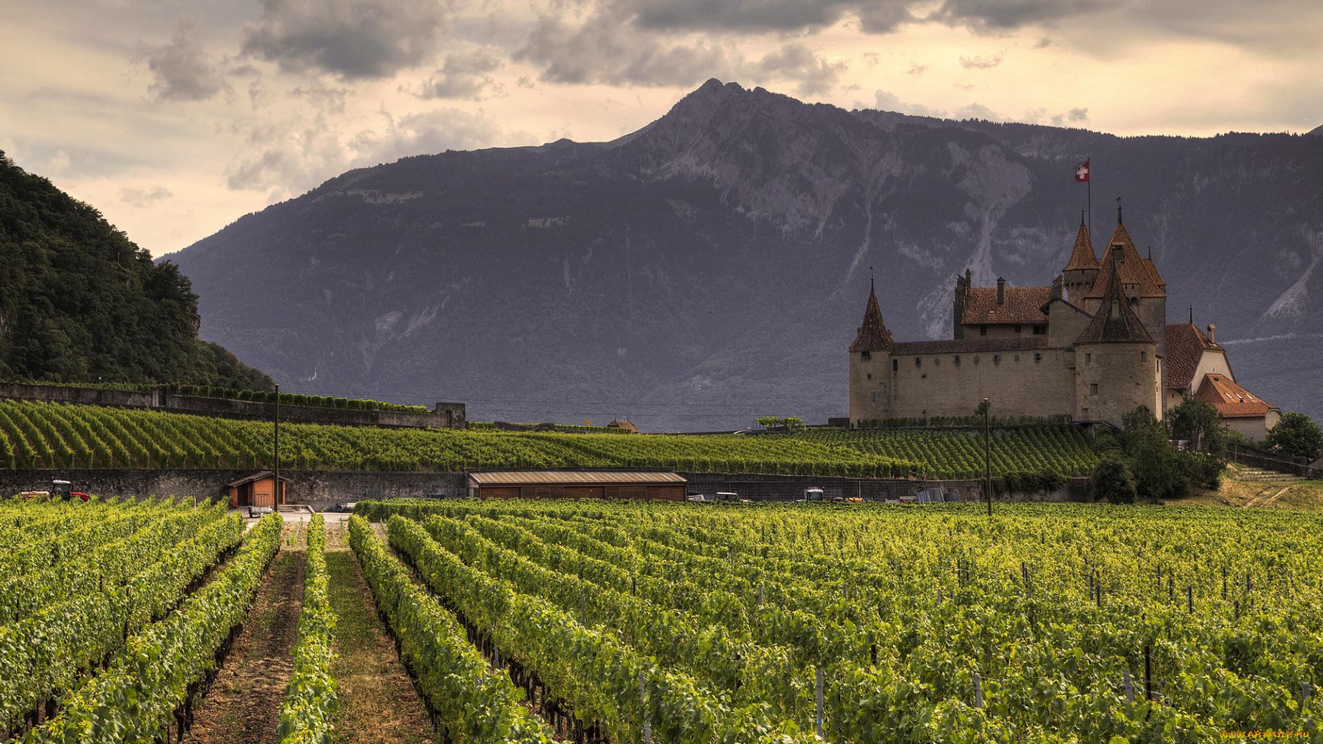 Замок швейцария вечер  № 2569350  скачать