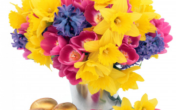 Картинка цветы букеты +композиции букет ведро нарциссы тюльпаны гиацинты